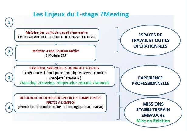 enjeux estage 7meeting